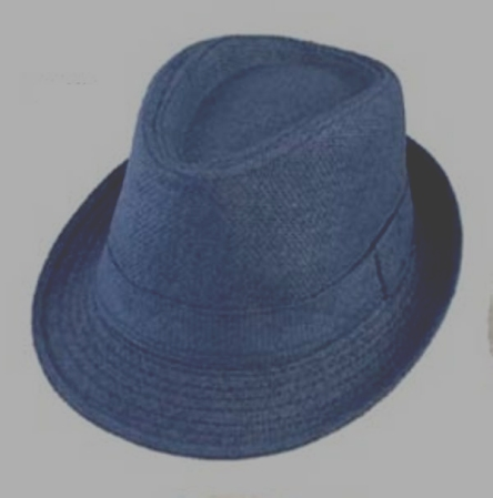 Boys Paper Straw Fedora - Blue