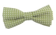 apple green bow tie