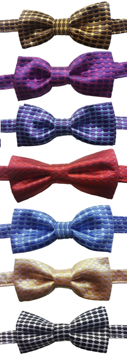 Boys Patterned Elegance Satin Bow Ties