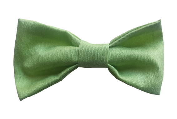 apple green baby silk bow tie