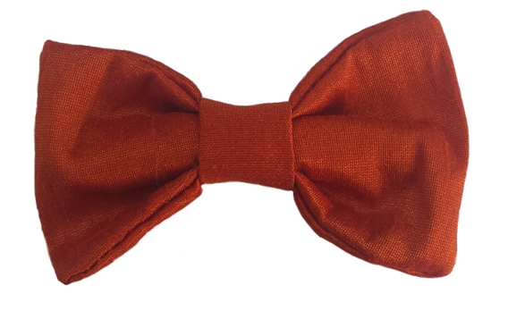 burnt orange baby silk bow tie