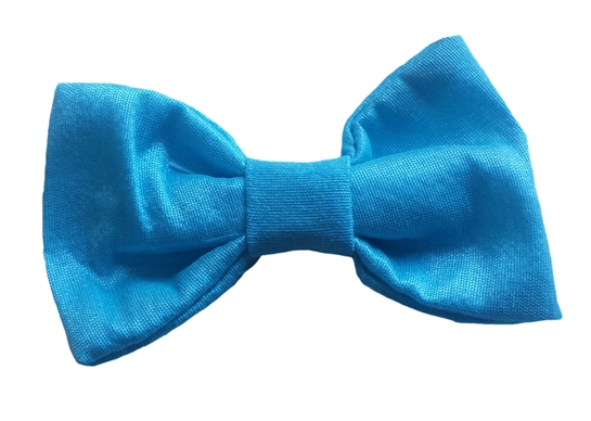 turquoise baby silk bow tie