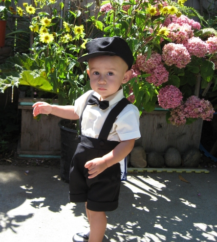 Boys Ring Bearer Shorts Set - Black